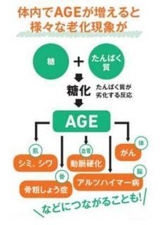 AGEによる老化現象.jpg