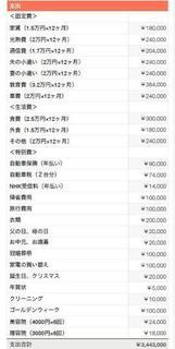 はぴ子さんの家の年間収支表.jpg