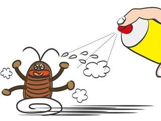 ゴキブリに殺虫剤を噴霧している画像.jpg