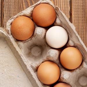 卵の画像.jpg