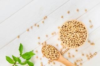 大豆の画像.jpg