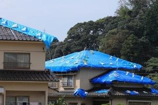 屋根にブルーシートをかけている画像.jpg