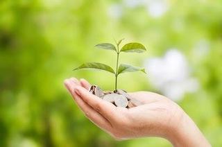 芽の出た苗木を手に持っている画像.jpg