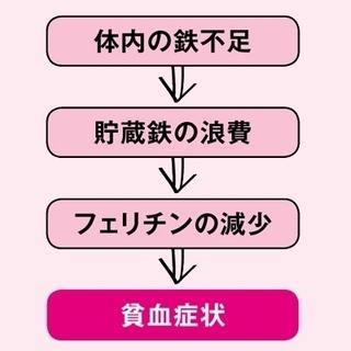 貧血のメカニズム.jpg